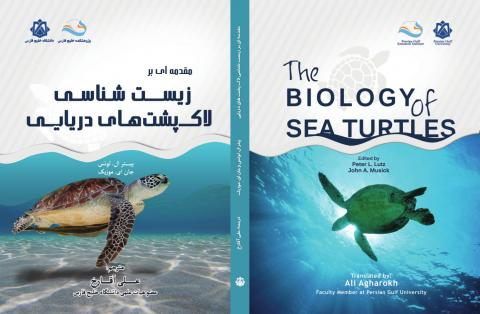 Introduction to the biology of sea turtles